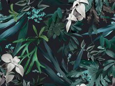 Stag Horns, ferns, climbing vines and delicate flowers all entwined to create this heavily foliaged tropical pattern. Digitally illustrated using original photography.