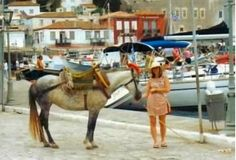 Slightly blurry..yet charming view of Dutch tourist to the island of Hydra,Greece. This is the port of the primary town of Hydra. Donkeys,horses and mules transport items and people. Motor vehicles are forbidden..except for a few municipal garbage trucks. Located 90 minutes from Athens port of Piraeus by high speed hydrafoil boat.