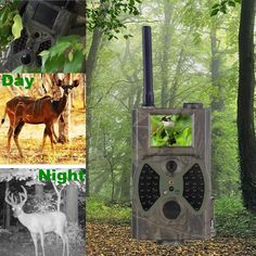 77.42$  Watch here - http://ali2ov.worldwells.pw/go.php?t=32686693121 - Deer Trail Cameras 12MP 1080P Photo Trap digital game camera wildlife cameras CE ROHS FCC