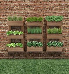 Vertical Gardens - Once you've designed your garden, pick the plants that you want to grow during each season. There's no better solution than to bring a vertical garden. While arranging a vertical garden… Vertical Herb Gardens, Vertical Garden Diy, Vertical Planter, Outdoor Wall Planters, Herb Planters, Planters On Fence, Micro Garden, Pallet Planters, Raised Planter