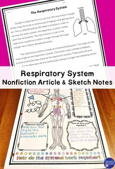 Respiratory System | Human Body | Life Science Teach your students about the respiratory system with this informative text that details the parts and function. Also included are doodle sketch notes!