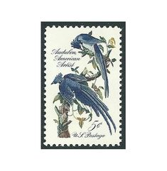 5c John James Audubon Columbia Jays .. Vintage Unused US Postage Stamps .. Pack of 10 stamps. Blue Jays stamp, Nature on stamps, Blue Birds by TreasureFox on Etsy