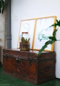 18-decoracao-detalhes-vintage-bau-plantas