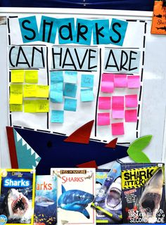 Shark Anchor Chart: Learning about sharks in the classroom 4th Grade Ela, Third Grade Science, 2nd Grade Classroom, Second Grade, Classroom Charts, Classroom Themes, Classroom Activities, Cool Science Experiments, Science Lessons