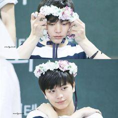 You just make the decision for a bias harder, Sungjae, with your cuteness! Yook Sungjae Cute, Sungjae And Joy, Btob Minhyuk, Who Are You School 2015, Im Hyun Sik, Rapper, Kpop, Korean Star, Cube Entertainment