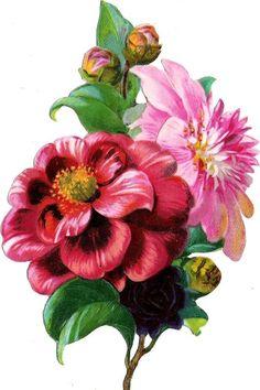 Oblaten Glanzbild scrap die cut chromo Blume flower 14,2 cm