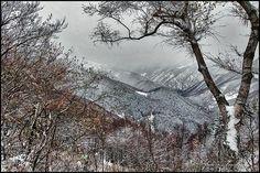 Anche al Bosco del Sorriso è arrivata la neve. First snow in the Forest of Smiles. #Oasi #Zegna, 28th October 2012. www.oasizegna.com