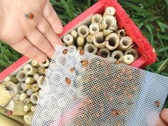make a lady bug house for the garden