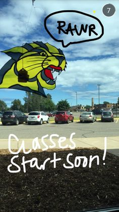 RAWR. This stained glass Wildcat from the NMU Bookstore is an awesome addition to any window!