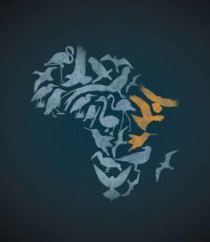 "RAWZ — ""Birds of East Africa"" Author: Corwin Harrell"