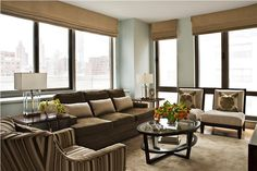 Transitional+(Eclectic)+Living+&+Family+Room+by+Elizabeth+Meyerson