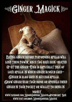 ginger root - magical root - pagan - witch - Pinned by The Mystic's Emporium Auras, Paranormal, Reiki, Witch Herbs, Herbal Magic, Magic Herbs, Magick Spells, Healing Spells, Gypsy Spells