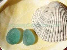 SEA GULL   ~ Beautiful Teal Aquamarine Sea Glass 3/8 inch ~ 2 pc ~ Matched set for earrings~ from tropical Pacific HU-0045 for jewelry by OdysseySeaGlass on Etsy