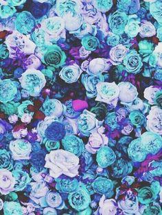 Blue. Teal. Purple.