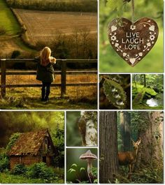 * Beautiful Collage, Beautiful Pictures, Pot Pourri, Gb Bilder, Color Collage, Affinity Photo, Autumn Cozy, Colour Board, Green And Brown