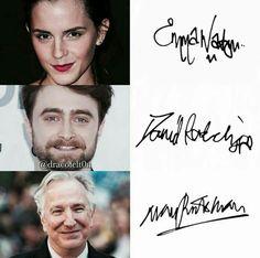 Harry Potter Actors, Harry Potter Hermione, Harry Potter Fandom, Harry Potter Memes, Draco Malfoy, Severus Snape, Hunger Games, Wise Words, It Cast
