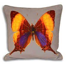 Butterfly cushion orange