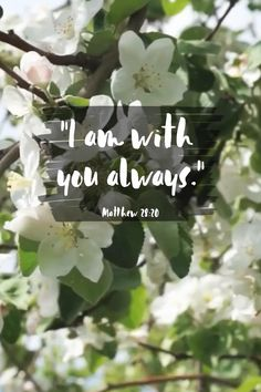 Healing Scriptures, Scripture Verses, Bible Verses Quotes, Faith Quotes, Bible Studies For Beginners, Spirit Of Truth, Father Daughter Relationship, Bible Promises, Biblical Inspiration