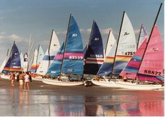 Sails on sails on sails.