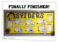 Second Grade Stories: Spider Fun