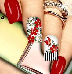 Red Nail Enamel and White Enamel with Floral red design and butterflies over a piano bar design. Floral Nail Art, Pink Nail Art, Acrylic Nail Art, Red Nail, Hot Nails, Hair And Nails, Flower Nails, Nail Arts, Summer Nails