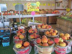 Peaches are in at Burris Farm Market.