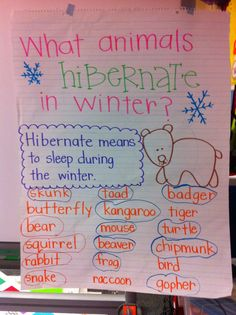What Animals Hibernate in Winter anchor chart