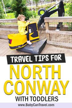 Get out in nature, play in the lake and even visit a toddler sized theme park all while visiting North Conway with a toddler. Click to read the best tips for North Conway with toddlers. Toddler Friendly Holidays, Toddler Travel Activities, Travel Essentials, Travel Tips, North Conway, Echo Lake, Flying With A Baby, Popular Stories, Traveling With Baby