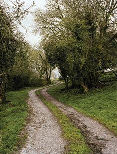 road leading to Kells Priory in Kilkenny, Ireland