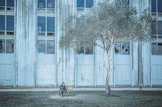Sandra Cifo- Solitude - FINE ART - Other - gold - ONE EYELAND PHOTOGRAPHY AWARDS 2013