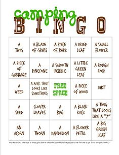 Backyard or Campout Bingo Printable for camping trips with the little people