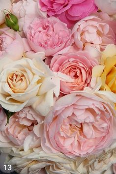 65 Ideas Birthday Flowers Bouquet Peonies Garden Roses Ana Rosa For 2019 Love Rose, My Flower, Pretty Flowers, Fresh Flowers, Pink Flowers, Pink Peonies, Pastel Roses, Yellow Roses, Pastel Bouquet