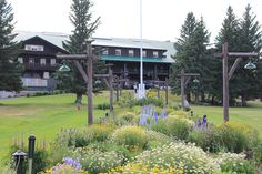 Glacier Park Lodge is conveniently located in East Glacier Park, Montana. Built over a century ago, this historic lodge is the perfect hotel for your Glacier National Park vacation. Glacier Park Lodge, Lodges, Wind Turbine, Montana, National Parks, Vacation, Building, Plants, Cabins