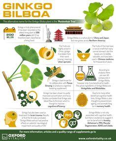 Ginkgo Biloba, Ginkgo Biloba Supplements, Ginkgo Biloba Tablets, Ginkgo Biloba History, Health Benefits of Ginkgo Biloba.