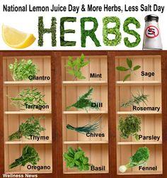 Happy Herbing!!!
