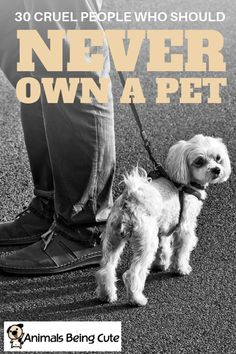 There are some people in life who should never own a pet. In this article, we'll reveal 30 examples of cruel people who don't deserve to ever have a pet of their own. Inspirational Animal Quotes, Cruel People, Mother Cat, Poor Dog, Interesting Animals, Animal Facts, Find Pets, Diy Stuffed Animals, Pet Stuff