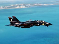 A shiny black F-14 Tomcat