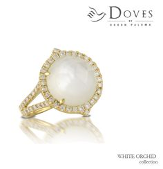 #yellowgold is all the rage...and the perfect frame for this brand new #whiteorchid ring