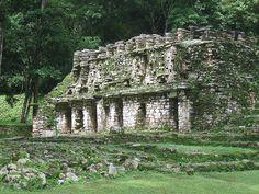 07 Agosto 2005, Yaxchilan, Chiapas, Mexico: La Bat-caverna!!