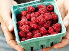 13 Foods That Fight Stress