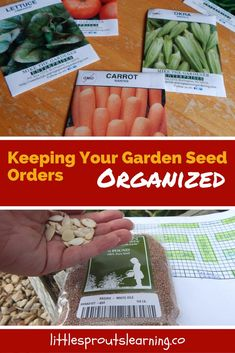 Do you find it hard to stay organized with your seed orders for the garden? Do you ever get so excited about ordering seeds that you double order? I do. I pour over catalog after catalog. I make lists. I map out my garden.