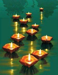 Lotus et zenithude