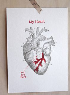 Valentine's Day,wall art, Mother's day Letterpress anatomical heart print vintage image black and red ink made in Australia Valentine's Day Mother's day Letterpress by fluidinkletterpress Birthday Cards For Boyfriend, Dad Birthday Card, Birthday Cards For Friends, Creative Birthday Cards, Diy Cadeau, Valentines Day Greetings, Valentine's Day Greeting Cards, Anatomical Heart, Jolie Photo