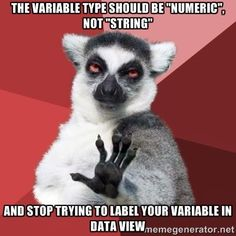 Not awful and boring examples for teaching statistics and research methods: SPSS Teaching Memes