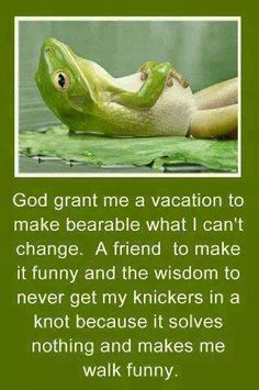 The new *improved* serenity prayer. God grant me a vacation to make bearable what I can't change. A friend to make it funny and the wisdom to never get my knickers in a knot b/c it solves nothing and makes me walk funny. Now Quotes, Quotes To Live By, Funny Quotes, Humour Quotes, Life Quotes, Hilarious Sayings, Hilarious Jokes, Dating Quotes, Family Quotes