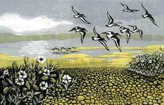 Blakeney Oystercatchers linocut 18 x 28 cm £150