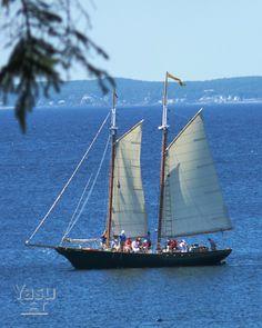 "the schooner ""Eleanor"" Kennebunkport, Maine"