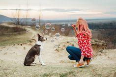 Dog Training, Boston Terrier, Puppies, Dogs, Cute, Photography, Dog Stuff, Animals, Advent