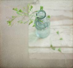 * by Vooky4U, via Flickr