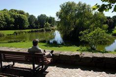Parque da Cidade - Porto. Lugar de lazer, num amplo espaço de áreas verdes e plantas variadas, charcos, lagos e abrigos. Possui ligação à praia e ao Oceano